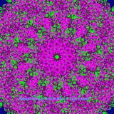 Mandala (2256/4389)