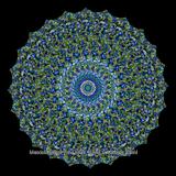 Mandala (2070/4389)