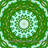 Mandala (860/4389)