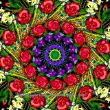Mandala (783/4389)