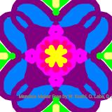Mandala (261/4389)